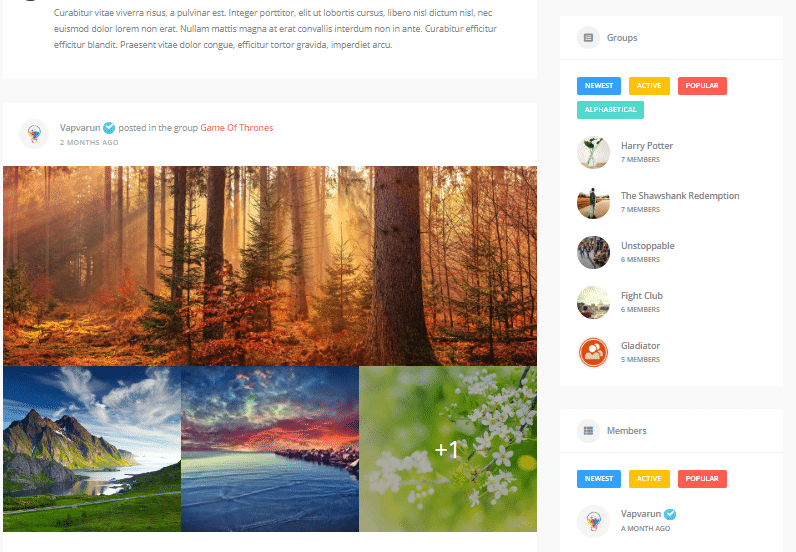 WordPress Social Community Theme