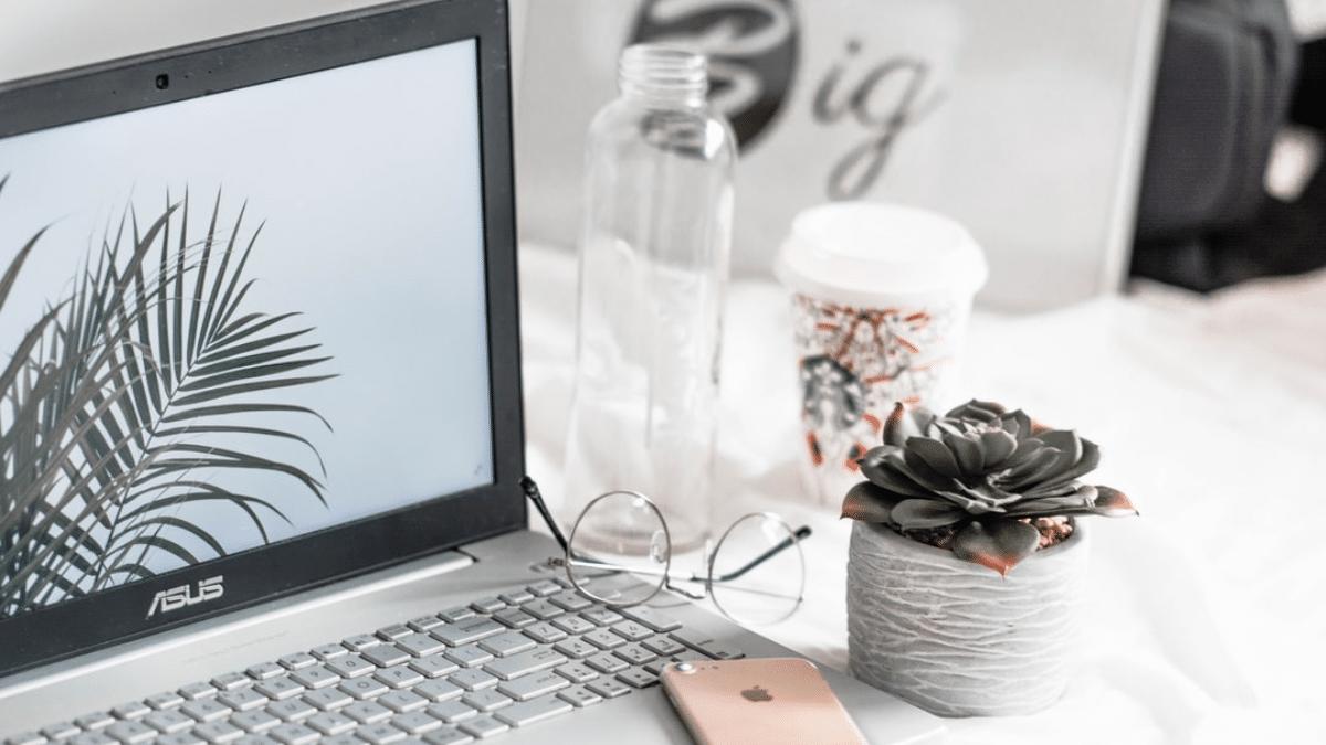 Elementor Themes for WordPress