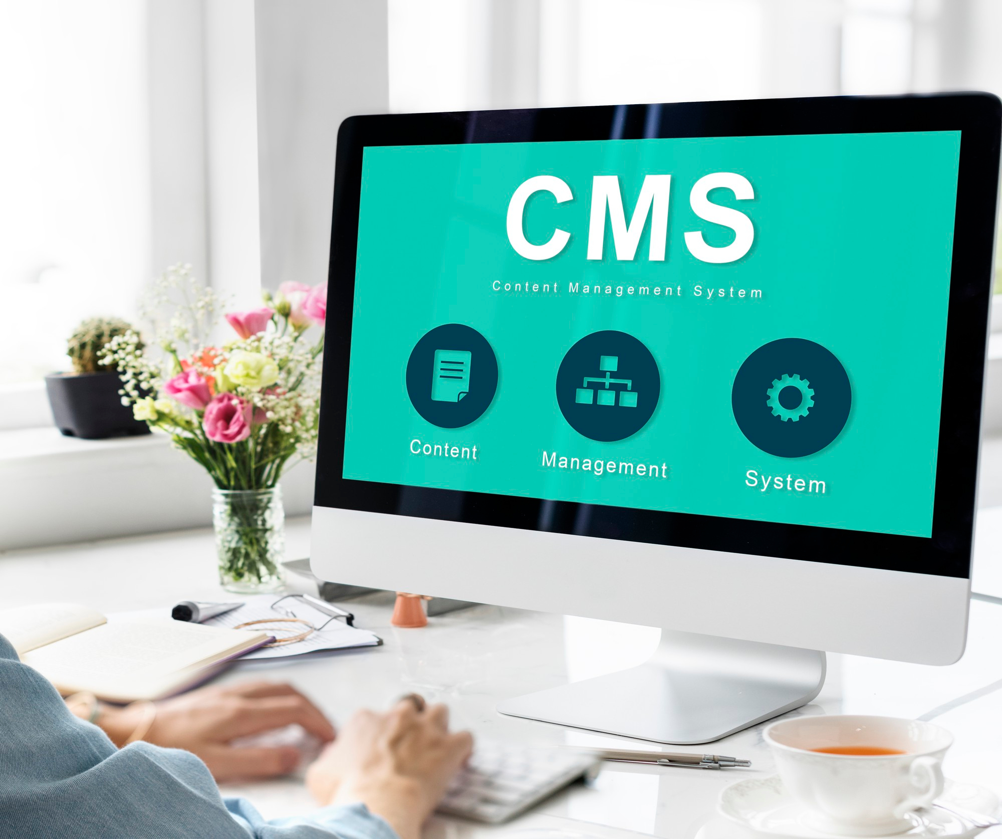 WordPress The Best CMS